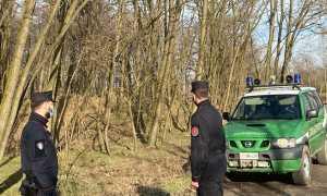carabinieri forestali jeep due