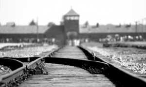 aushwitz binari campo concentramento