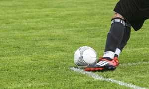 calcio pallone prato