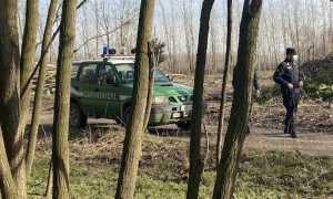 carabinieri forestale auto uomo