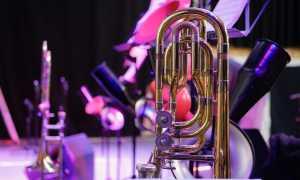jazz foto