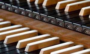 organo musica