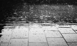 pioggia mattonelle bn