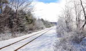 rotaie neve